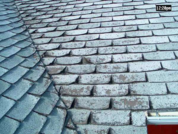 Distressed Asphalt - Asphalt shingles lose their granules over the years. Visible signs of distressed asphalt shingles in need of replacement are pieces of torn shingles, curled tab corners, and centerline cracks. If your shingles display any of these signs, contact Bricor Roofing today!