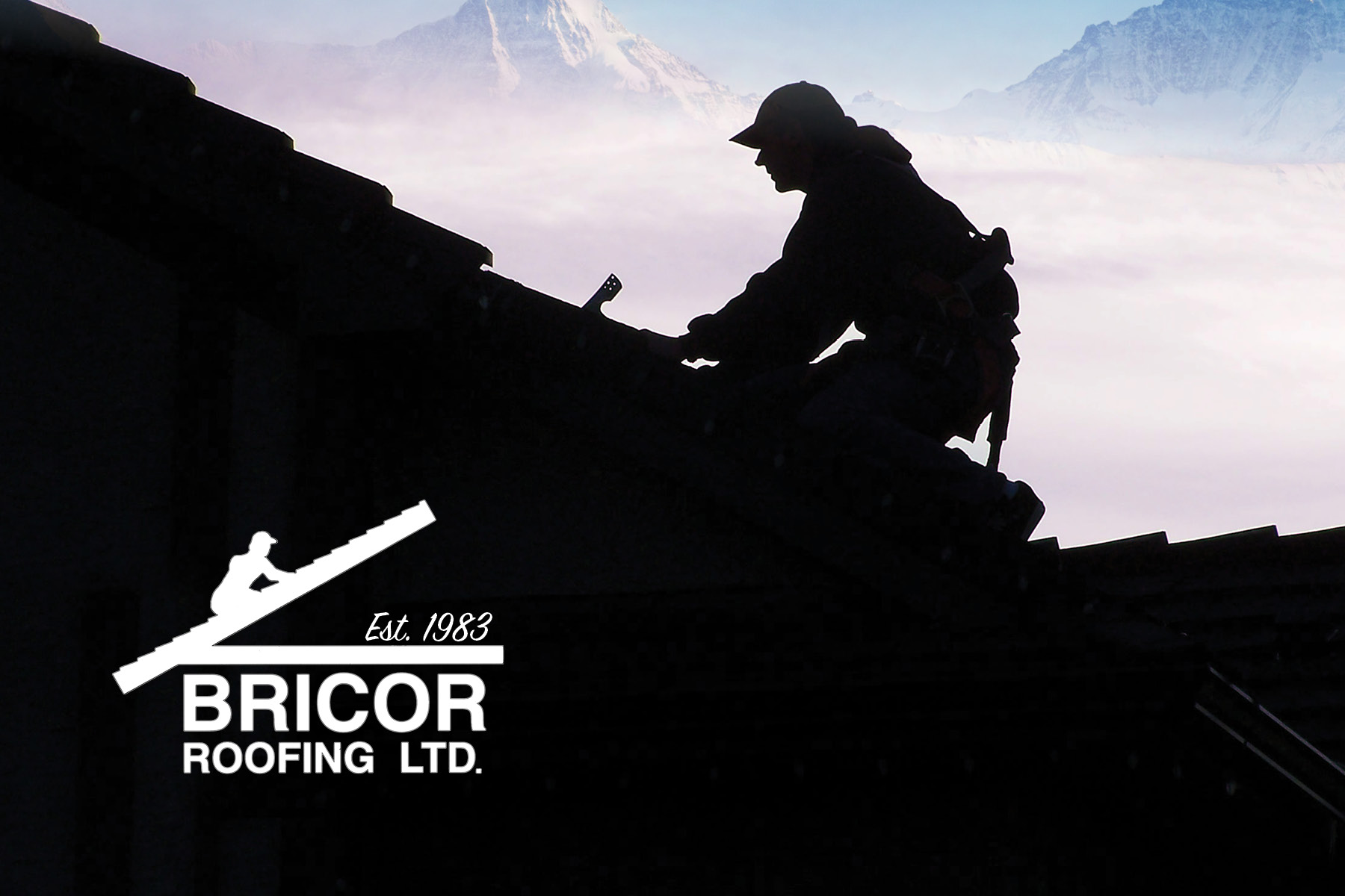 Bricor Roofing Terms and Conditions Banner